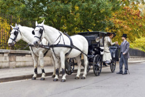 When Love and Marriage Don't Go Together like a Horse and Carriage….What's Left? by Cheryl Stein